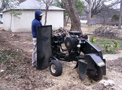 Dallas Stump Grinding